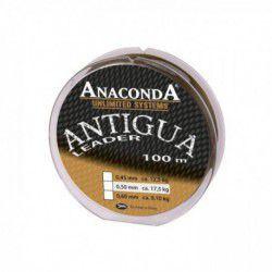 Przypon Strzałowy Anaconda Antigua 0,45mm karpiowy